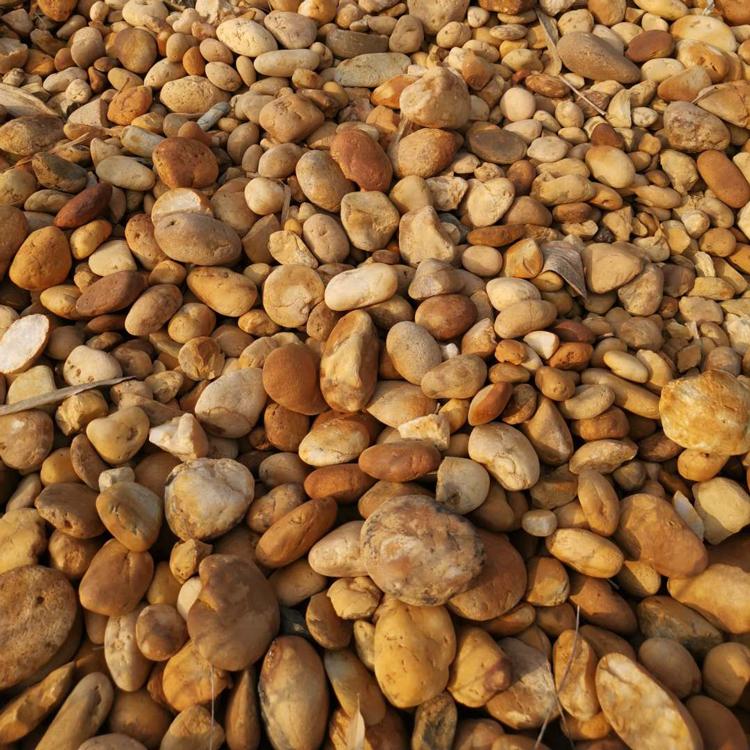 黑色鹅卵石厂家 批发鹅卵石 园林铺路河道垫层变电站变压器优质鹅卵石 量大价优